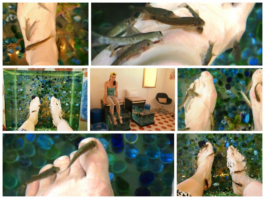 drFish-Sikanafisuja